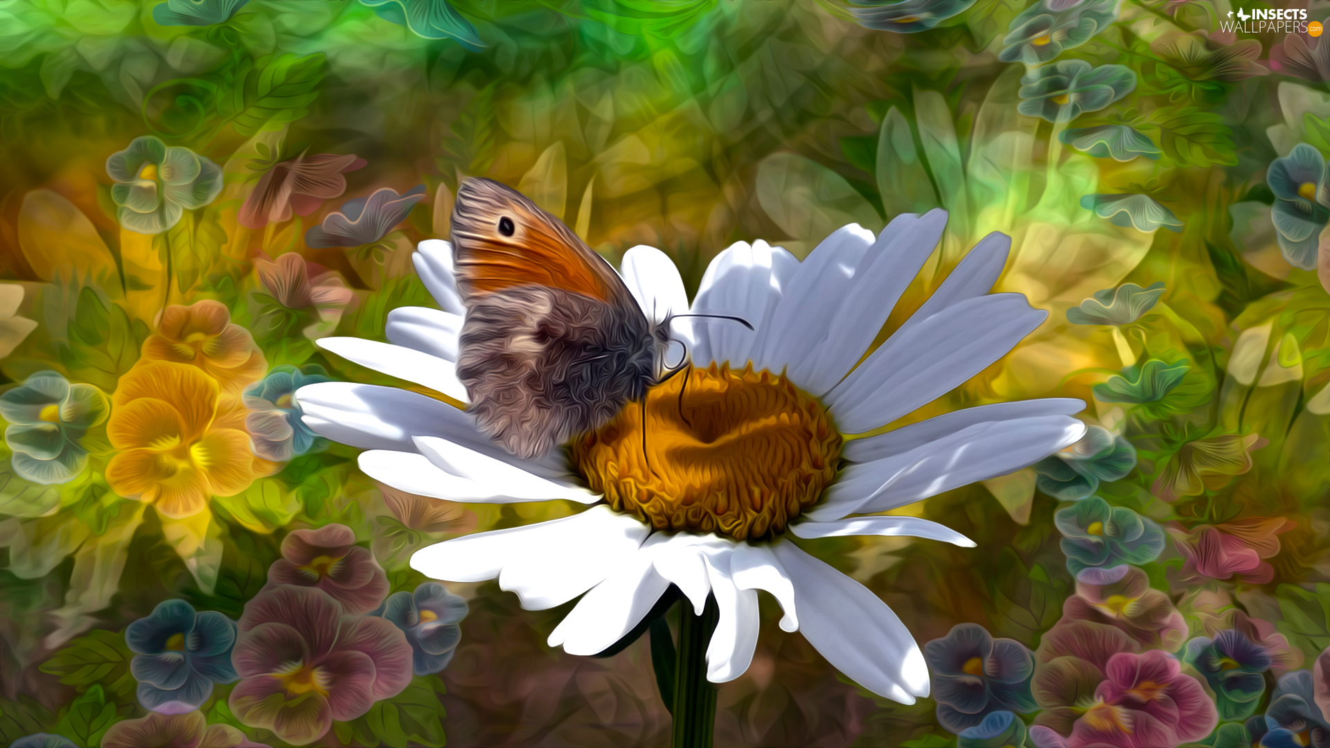 graphics, Colourfull Flowers, Colorful Background, butterfly